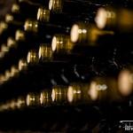 vn9 150x150 Despre vinuri vrancene, cu bloggeri vranceni