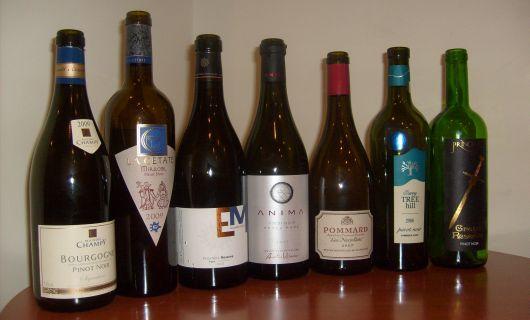 Temperamentalul Pinot Noir (Degustare de grup)